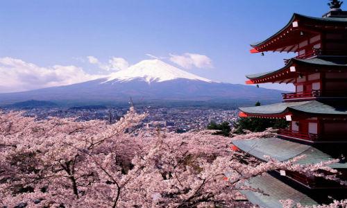 Blossoming-Tokyo